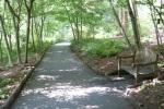 LG Path